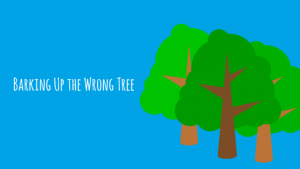 Idiom Explainer: Barking Up the Wrong Tree