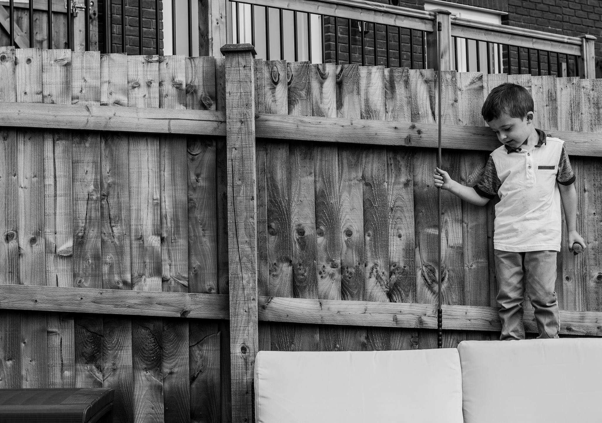 photo series magpie