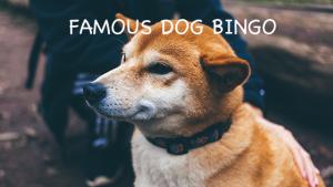 famous dog bingo