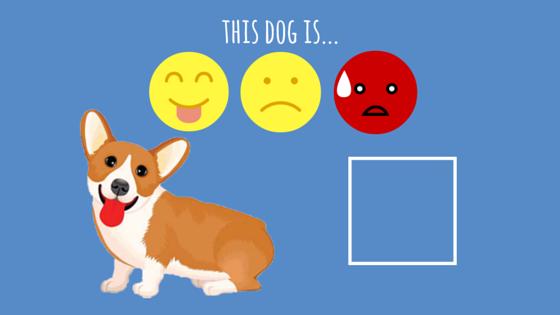 cute dog worksheet