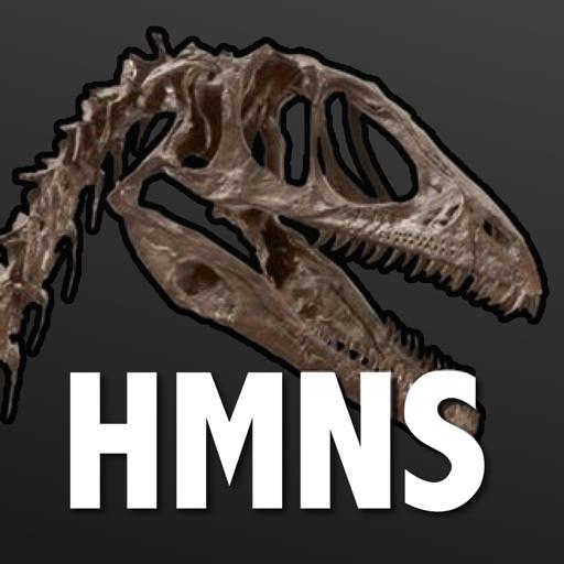 Access HMNS app icon